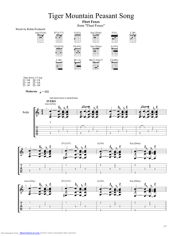Tiger Mountain Peasant Song Guitar Pro Tab By Fleet Foxes
